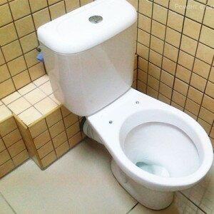 kak-podklyuchit-unitaz-k-kanalizacii