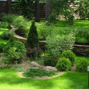 Как посадить сад на дачном участке